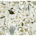 Decorative Aggregate - Mother of Pearl